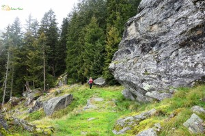 cillertal-users71