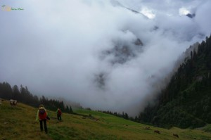 cillertal-users88